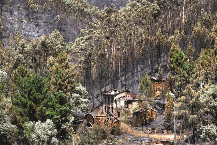 Paisagem devastada compromete turismo
