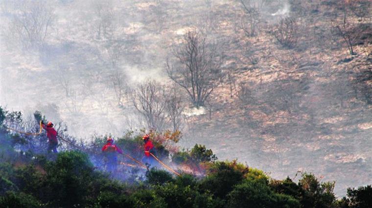 Grandes áreas propagam incêndios