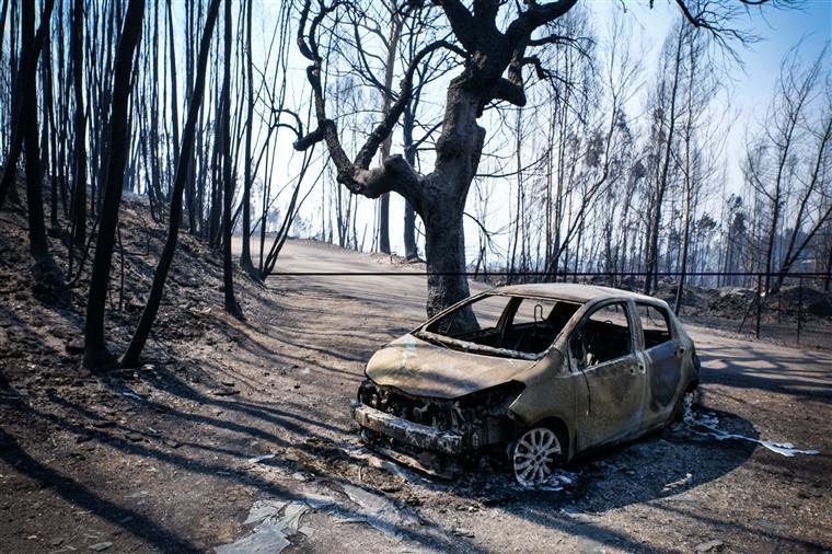 MEO não vai cobrar mensalidades ou penalizações às vitimas dos incêndios
