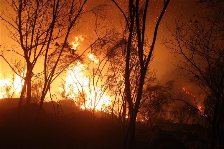 Ajuda de Bruxelas já está no terreno — Incêndios
