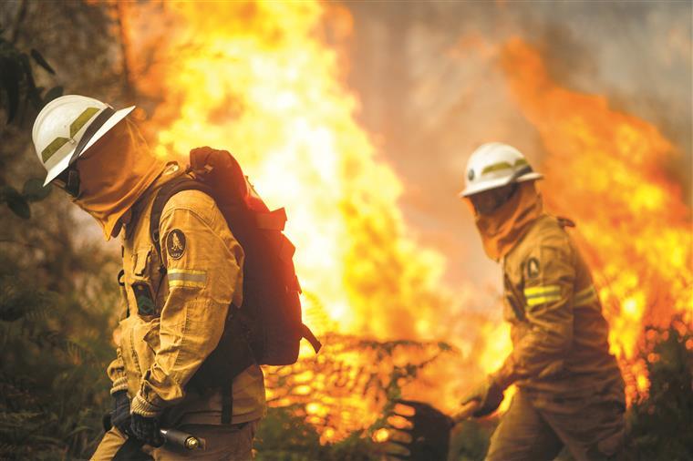 Ativado Plano Municipal de Emergência em Vila de Rei, fogo ameaça aldeias