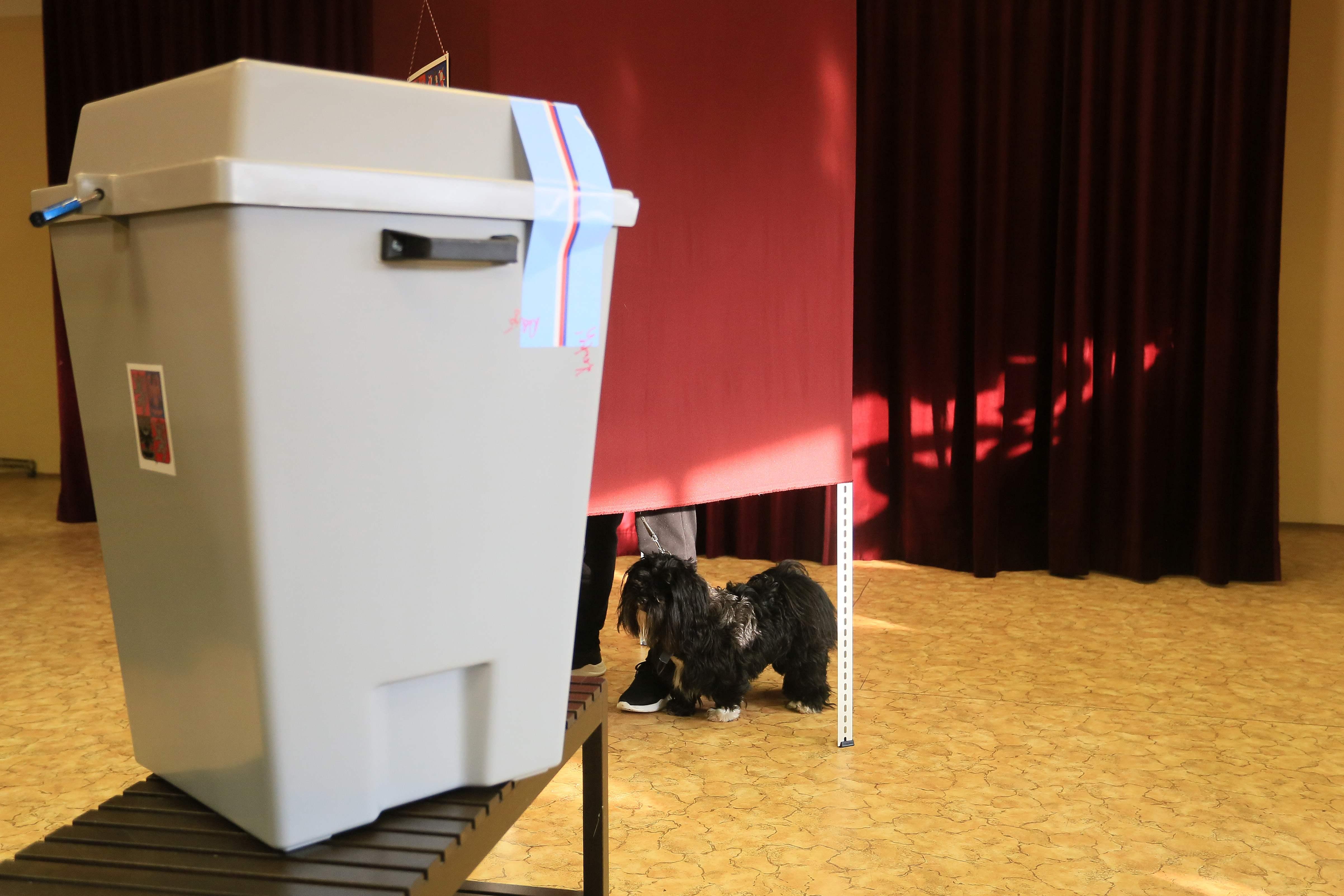 Milos Zeman eleito para novo mandato como Presidente da República Checa