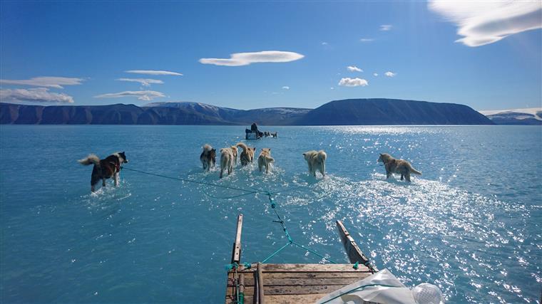 Gronelândia. Imagem viral chama atenção para aquecimento global
