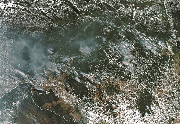 Amazónia arde a uma velocidade nunca antes vista