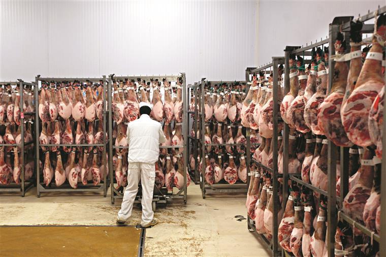 Portugal produziu no ano passado 72,2% daquantidade de carne necessária para o consumo nacional