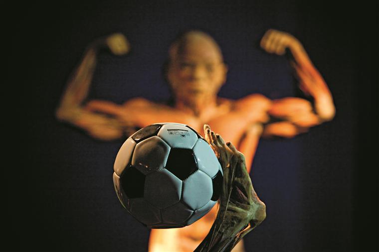 Há uma galeria de desportistas, com dez corpos a praticar desporto, do futebol ao básquete