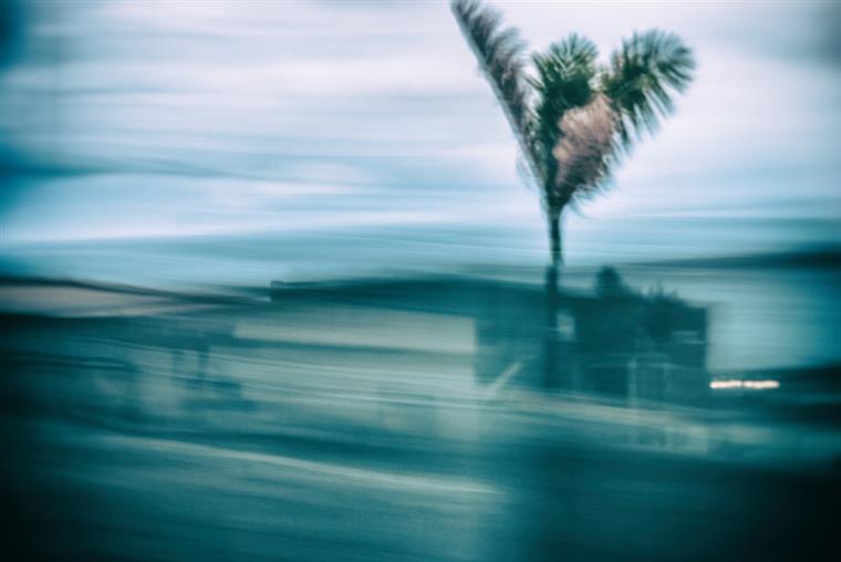 Cheias, tempestades e furacões, tsunamis: os desastres naturais são cada vez mais frequentes