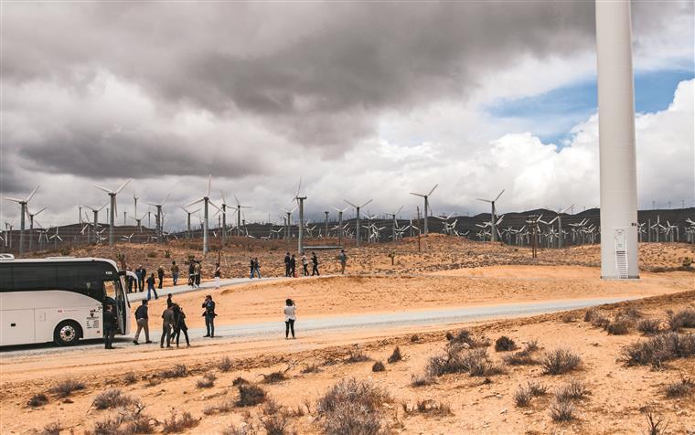 EDP investiu 90 milhões de euros no parque da Califórnia mas em oito anos conta já ter conseguido o retorno de cada cêntimo