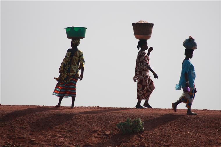Os vizinhos da Libéria Serra Leoa e Guiné-Conacri continuam a combater a epidemia