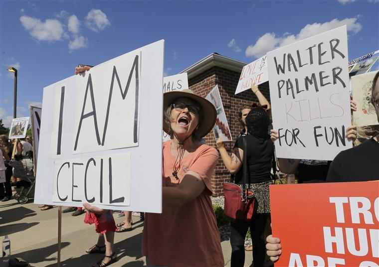 Os protestos continuam à porta de Dr. Palmer