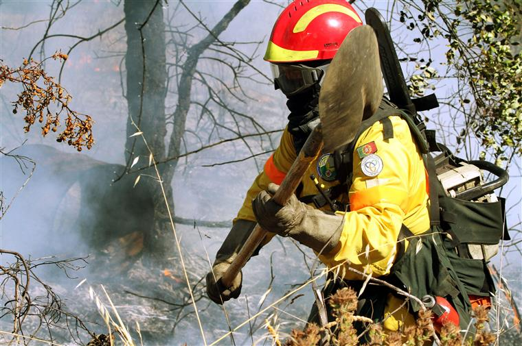 o incêndio deflagrou cerca das 13 horas