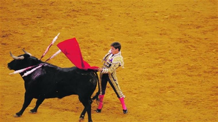 A acontecer, esta seria a quarta tourada a decorrer na primeira cidade anti-touradas do país