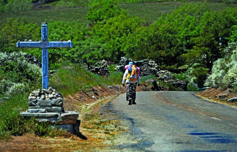 O Caminho Francês de Santiago é percorrido, todos os anos, por milhares de peregrinos