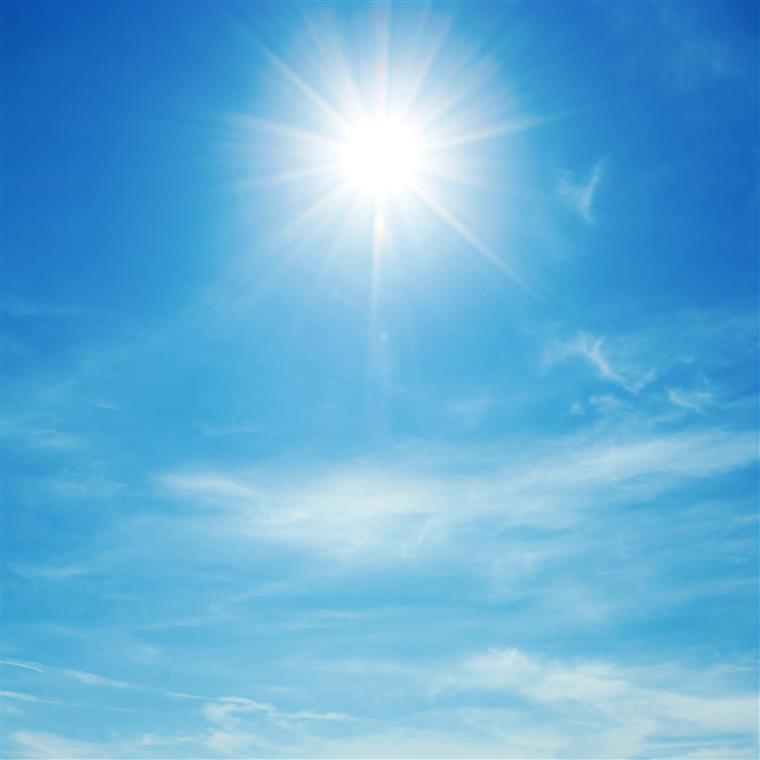 """""""A grande fonte desta vitamina é o sol, que transforma colesterol em vitamina D"""", explicou especialista"""
