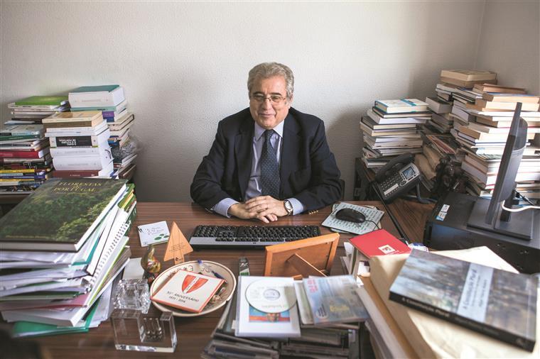 Ferreira do Amaral ficou agradavelmente surpreendido com os acordos à esquerda e elogia  a capacidade de negociação de António Costa