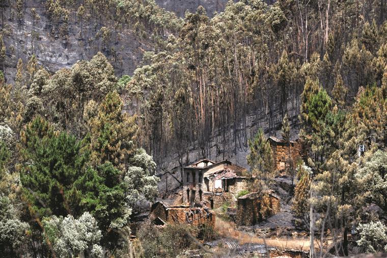 PSD quer que Comissão Técnica faça relatório sobre fogos de Outubro