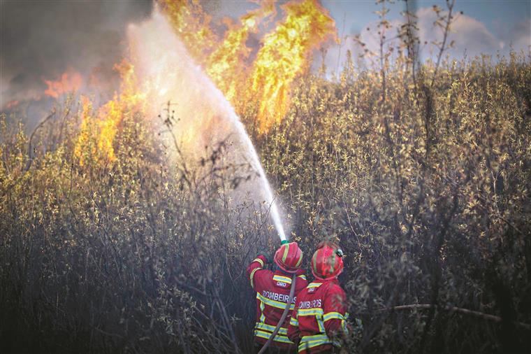 Cinco grandes incêndios permanecem ativos