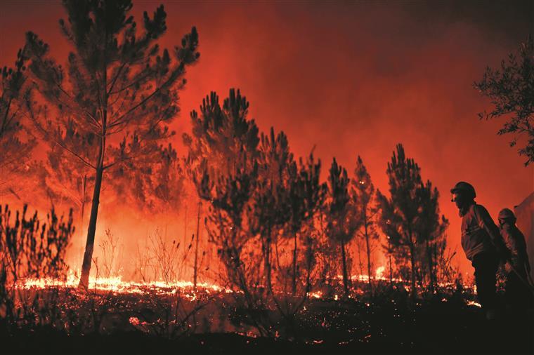 Quinhentos bombeiros e 14 meios aéreos combatem dois fogos em Oleiros