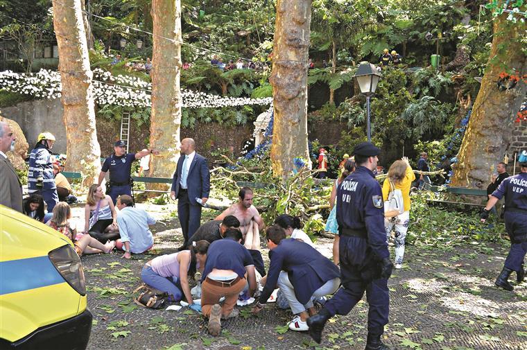 Paulo Cafôfo é arguido no caso da queda da árvore no Monte