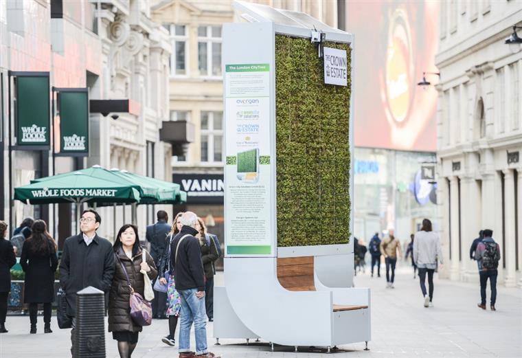 Este banco consegue absorver a mesma quantidade de poluição que 275 árvores