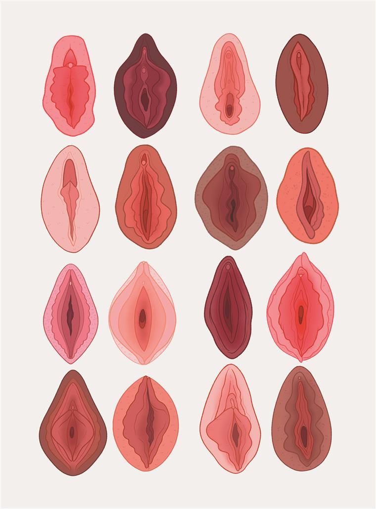 Ilustração de Charlotte Willcox que integra a exposição inaugural
