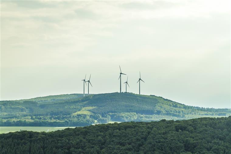 BEI financia energia eólica na EDP com 45 milhões